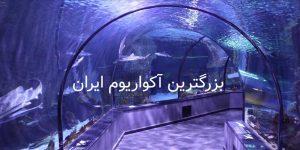 picture of anzali aquarium tunnel تونل آکواریوم انزلی